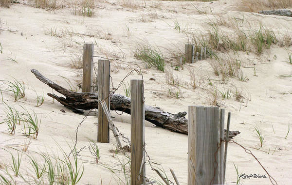 Windswept Beach Fence Cape Cod Massachusetts Art Print