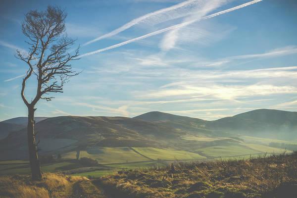 Wall Art - Photograph - Windswept Scottish Landscape by Mr Doomits