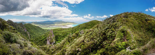 Photograph - Windy Canyon Panoramic View Great Barrier Island New Zealand by Joan Carroll