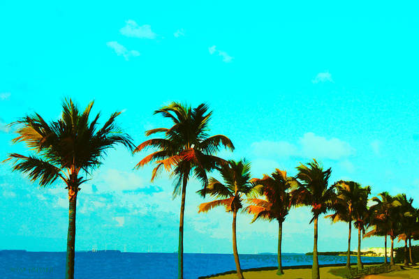 Photograph - Windy Day On N Roosevelt Bld Key West by Susan Vineyard