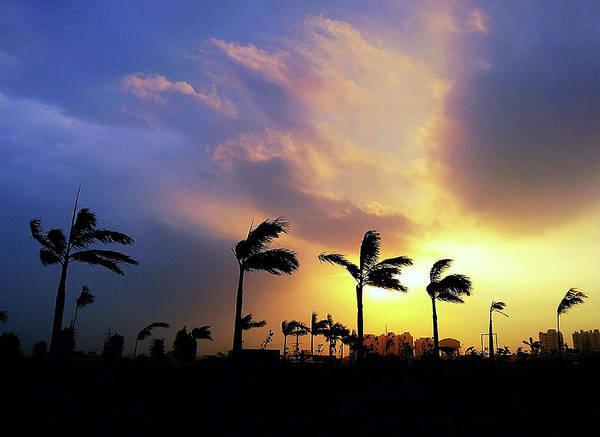 Photograph - Windy Morning by Atullya N Srivastava
