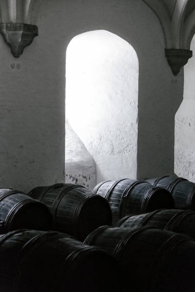 Cellar Wall Art - Photograph - Wine Cellar by Joana Kruse