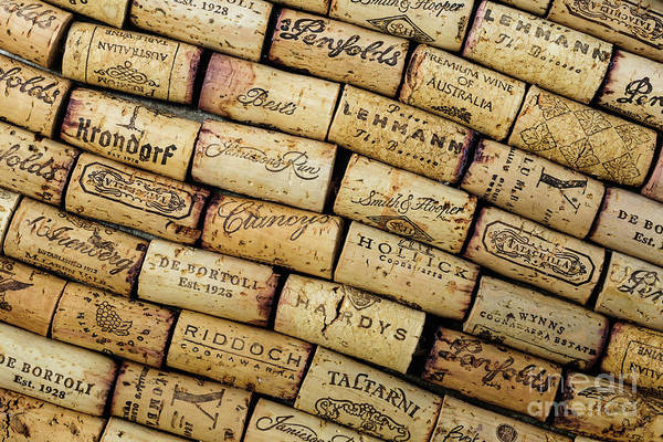 Photograph - Wine Corks 1 by Werner Padarin