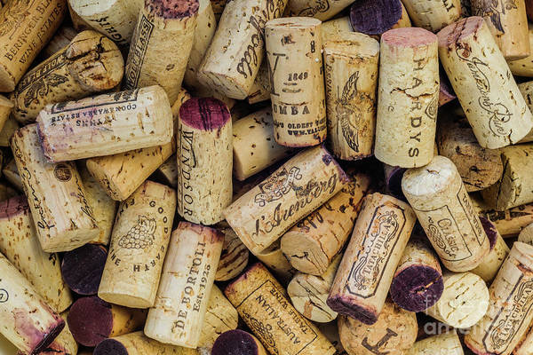 Photograph - Wine Corks 2 by Werner Padarin