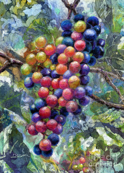 Making Wall Art - Painting - Wine Grapes by Hailey E Herrera