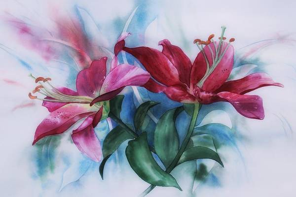 Wine Lillies In Pastel Watercolour Art Print