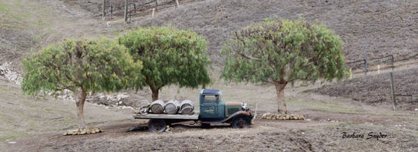 Painting - Winery Wine Barrels And Vintage Truck by Barbara Snyder