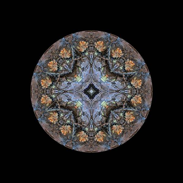 Winged Creatures In A Star Kaleidoscope #1 Art Print