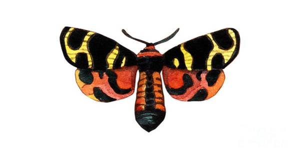 Wall Art - Painting - Winged Jewels 5, Watercolor Moth Black Yellow Orange And Red Tropical by Audrey Jeanne Roberts