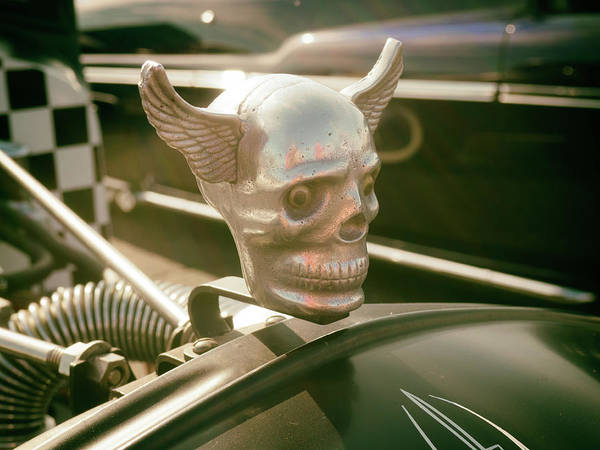 Photograph - Winged Skull by Michael Colgate