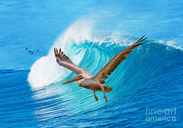 Brown Pelicans Wall Art - Photograph - Wings And Waves by Laura D Young