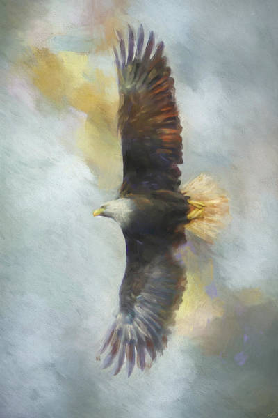 Painting - Wingspan Bald Eagle Art by Jai Johnson