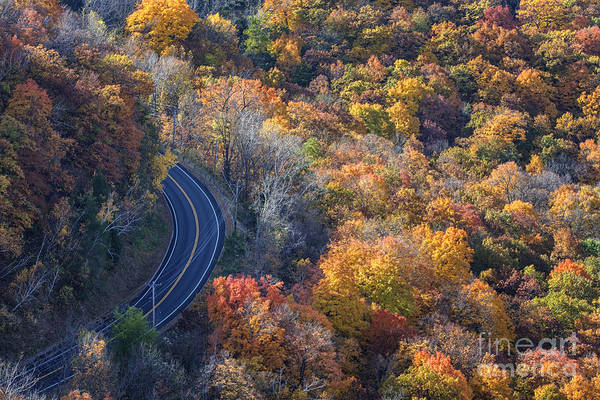 Photograph - Winona Minn Photo Autumn Road by Kari Yearous