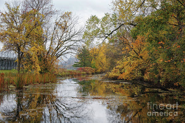 Photograph - Winona Minnesota Photo Gilmore Creek Fall Colors by Kari Yearous