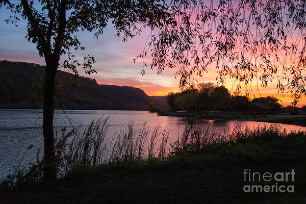 Photograph - Winona Minnesota Pink Sunset With Branches by Kari Yearous