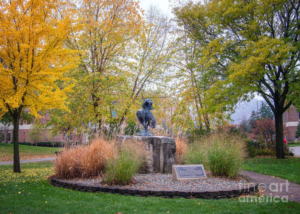 Photograph - Winona State University Campus by Kari Yearous