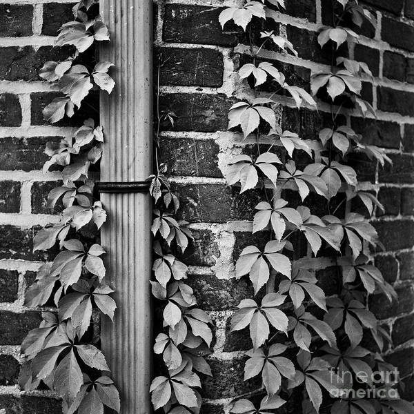 Photograph - Winston Salem 79 by Patrick M Lynch