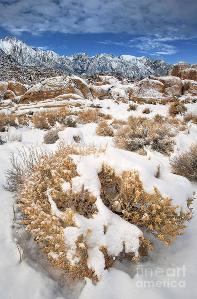 Photograph - Winter Alabama Hills Eastern Sierras California by Dave Welling