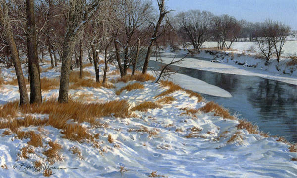 Drawing - Winter Along The Little Sioux by Bruce Morrison