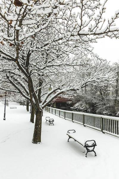 Photograph - Winter Along The Winnipesaukee River by Robert Clifford