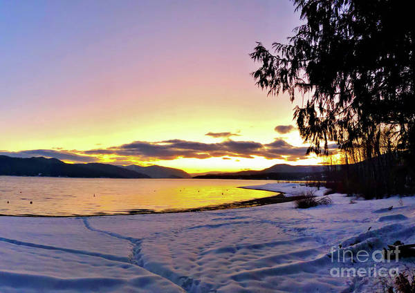 Photograph - Winter At Ross Creek by Victor K
