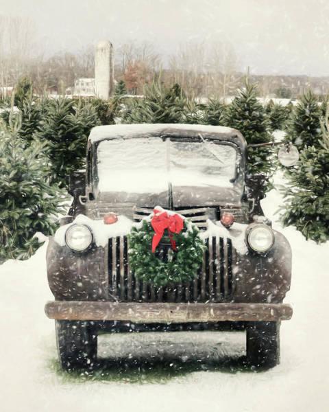 Wall Art - Photograph - Winter At The Tree Farm by Lori Deiter