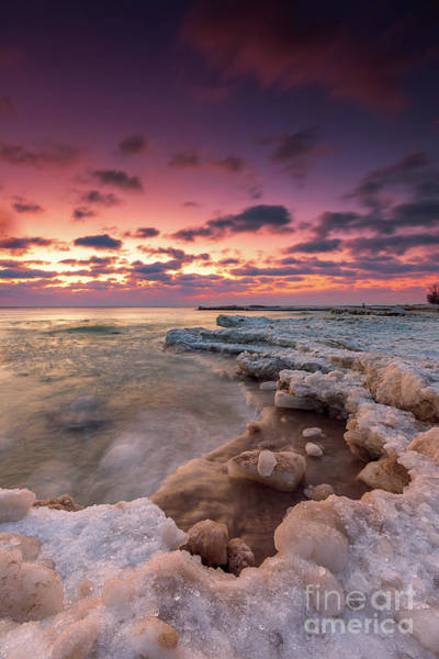 Wall Art - Photograph - Winter Attrition by Andrew Slater
