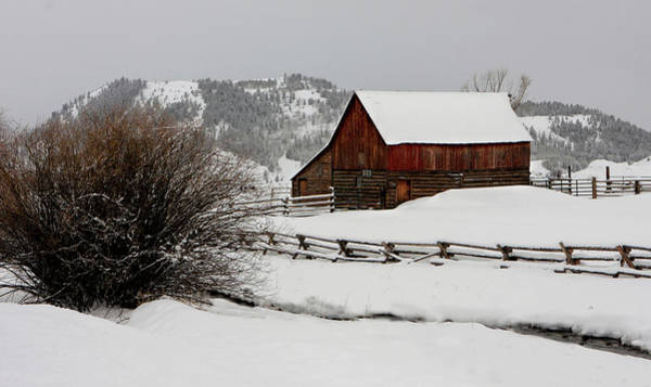 Photograph - Winter Barn by Ronnie and Frances Howard