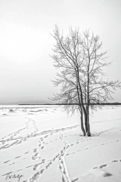 Great Lakes Region Wall Art - Digital Art - Winter Beach Tracks by Phill Doherty