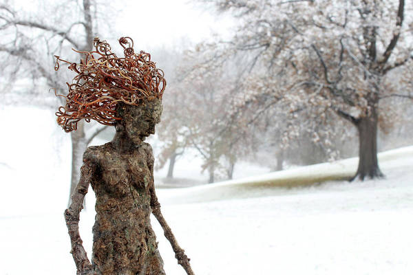Wall Art - Sculpture - Winter Beauty by Adam Long