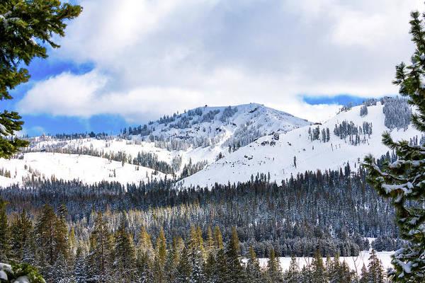 Photograph - Winter Beauty by Jim Thompson