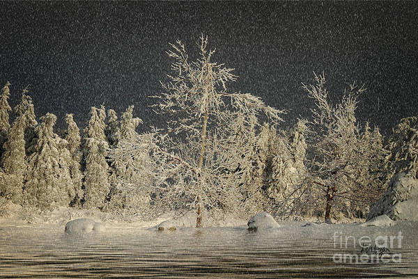Photograph - Winter Begins by Lois Bryan