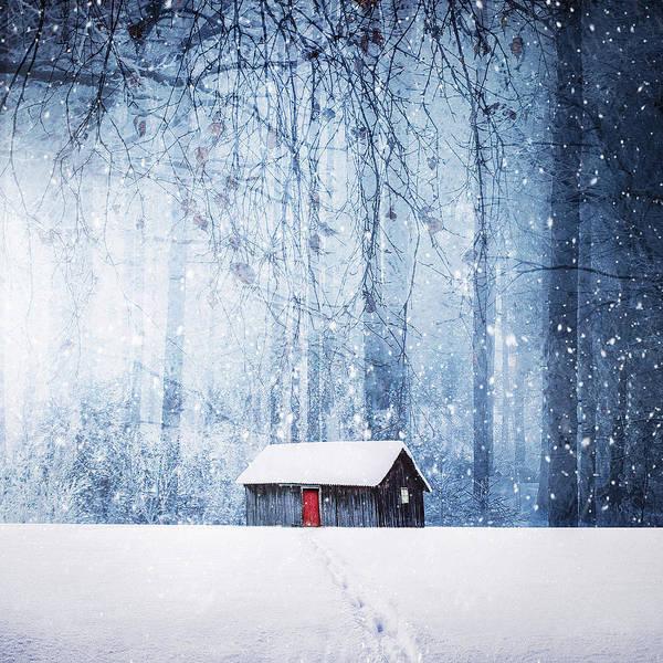 Wall Art - Photograph - Winter by Bess Hamiti