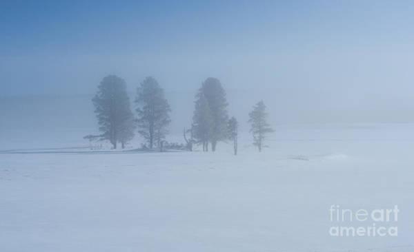 Wall Art - Photograph - Winter Blues by Sandra Bronstein