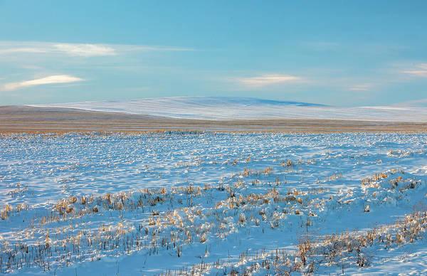 Photograph - Winter Blues by Todd Klassy