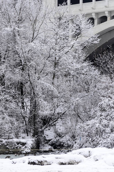 Photograph - Winter Bridge by Stewart Helberg