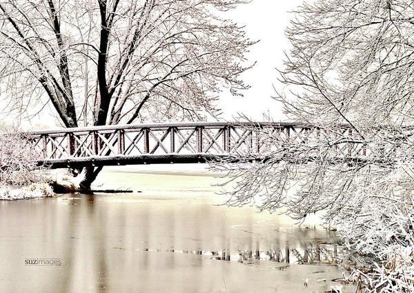 Photograph - Winter Bridge by Susie Loechler