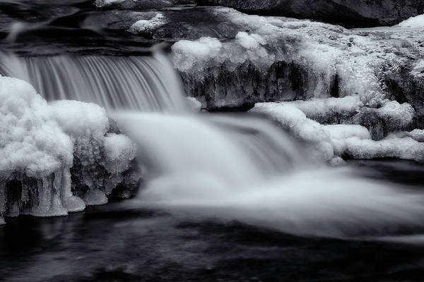 Photograph - Winter Brook In Black And White by Tom Singleton