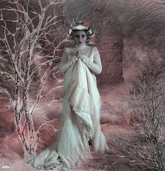 Shrub Mixed Media - Winter Chill 0091 by G Berry