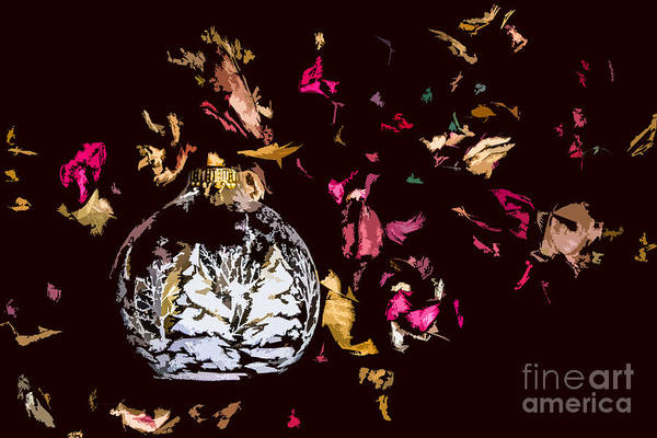 Photograph - Winter Colors by Michael Arend
