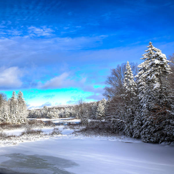 Photograph - Winter Comes To The Moose River by David Patterson