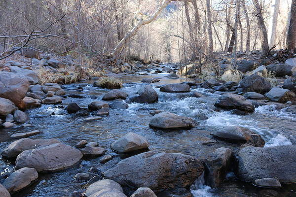 Photograph - Winter Creek - 3 by Christy Pooschke