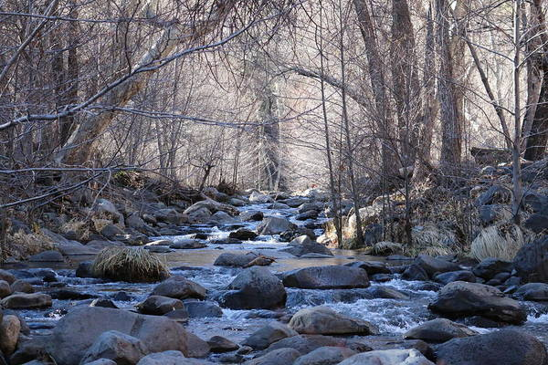 Photograph - Winter Creek - 4 by Christy Pooschke
