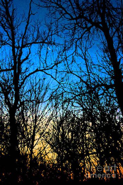 Photograph - Winter Crescent Moon Painted by Karen Adams