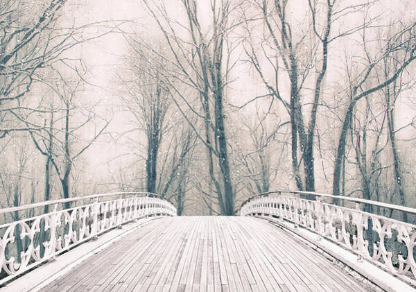 Wall Art - Photograph - Winter Crossing by Jessica Jenney