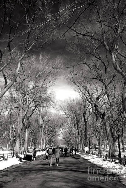 Wall Art - Photograph - Winter Day On The Mall by John Rizzuto