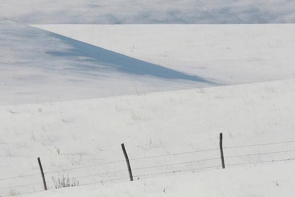 Snow Fence Digital Art - Winter Day On The Prairies by Mark Duffy