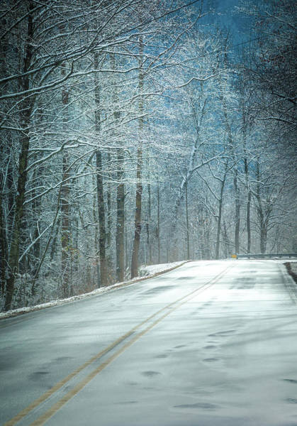 Wall Art - Photograph - Winter Dreams by Karen Wiles