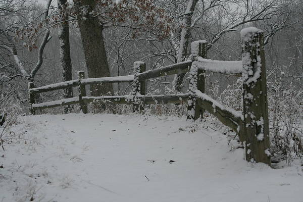 Photograph - Winter Fence Trail H by Dylan Punke
