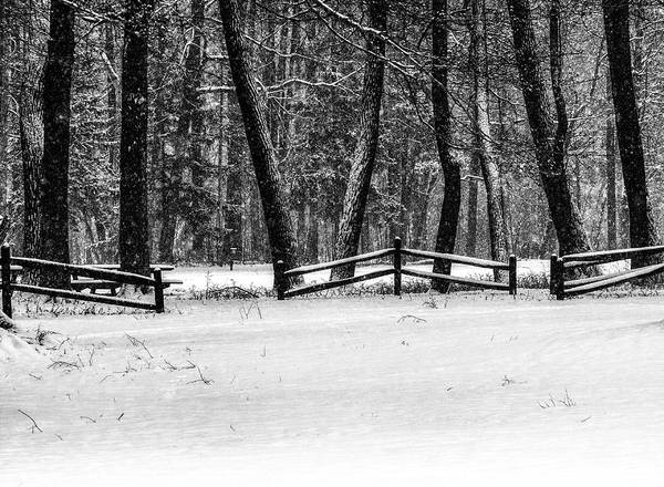 Photograph - Winter Fences In Black And White  by Richard Kopchock